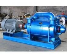 浙江2SK水环式真空泵